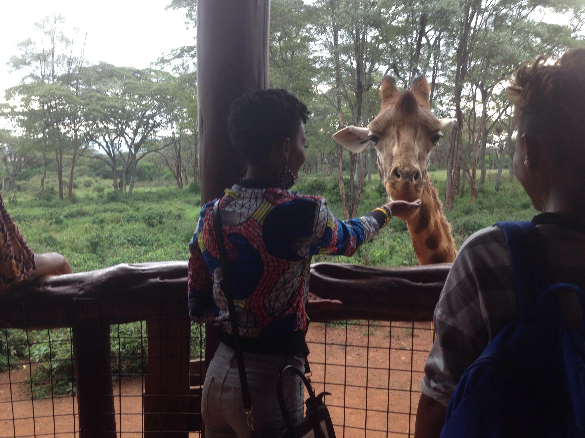 giraffe_manor